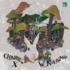 Couverture de l'album Wonderland Remixed - EP