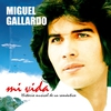 Cover of the album Mi Vida - Historia Musical de un Romántico