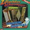 Cover of the album Steirische Harmonika, Folge 2 (Instrumental)