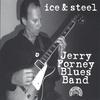 Couverture de l'album Ice & Steel