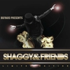 Cover of the album Shaggy & Friends