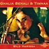 Cover of the album Wild Harissa