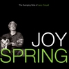 Couverture du titre Joy Spring