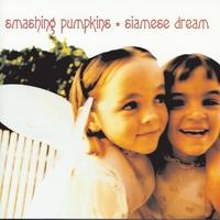 Cover of the track Siamese Dream