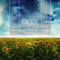 Couverture du titre Where The Fields Never End : Revisited