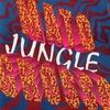 Couverture de l'album Jungle - EP