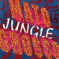 Couverture du titre Jungle - EP