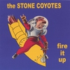 Cover of the album Fire It Up
