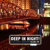 Couverture de l'album Deep In the Night! A Jazz House Experience