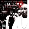 Couverture de l'album Harlem Musik