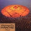 Couverture de l'album Sanacore 1.9.9.5.