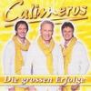 Cover of the album Die großen Erfolge