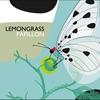 Cover of the album Papillon