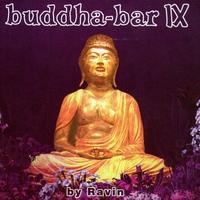 Cover of the track Buddha Bar IX