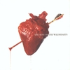Cover of the album The Best of the Wildhearts