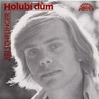 Cover of the track Holubí dům