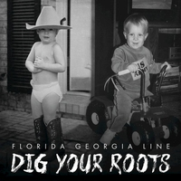 Cover of the track Dig Your Roots