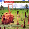 Couverture de l'album Celtic Dreamtime