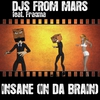 Couverture de l'album Insane (In Da Brain) [feat. Fragma]