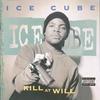 Cover of the album Kill at Will