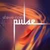 Couverture de l'album Pulse