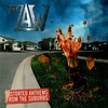 Couverture de l'album Distorted Anthems from the Suburbs
