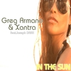 Couverture de l'album In the Sun (Remixes)