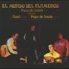 Couverture de l'album El mundo del flamenco