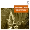 Cover of the album Spiritlands - Traditional Native American Music