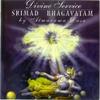 Couverture de l'album Divine Service