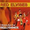 Couverture de l'album I Wanna See You Bellydance
