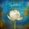 Couverture de l'album Spiritus