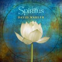 Couverture du titre Spiritus