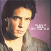 Couverture de l'album The Best of Rick Springfield