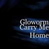 Couverture du titre Carry me home *