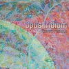 Cover of the album Opus Iridium