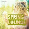 Cover of the album Spring Lounge 2019 - Sounds Like Sunshine