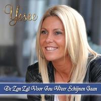 Couverture du titre De Zon Zal Voor Jou Weer Schijnen Gaan - Single