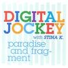Couverture de l'album Paradise and Fragment (feat. Stina K.)