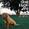 Couverture de l'album Coz I Luv Ya - Single