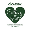 Cover of the track Calling All Hearts