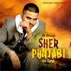 Cover of the album Sher Punjabi