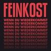 Cover of the album Wenn du wiederkommst - Single