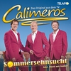 Cover of the album Sommersehnsucht