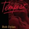 Cover of the album Tempest