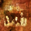 Cover of the album Ultimate Collection: Black Uhuru