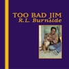 Couverture de l'album Too Bad Jim