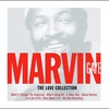 Couverture du titre Your Precious Love (Marvin Gaye & Tammi Terrell)