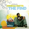 Couverture de l'album The Find