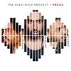 Couverture de l'album Freak (feat. Jay Sean & Juggy D) - Single